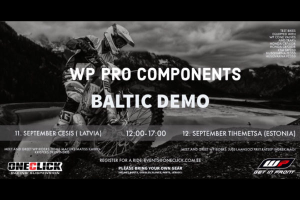 WP-demo