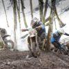 Piksepini V etapp, foto Birgit Pettai